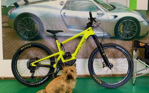 Folie Bike SANTA CRUZ LSF